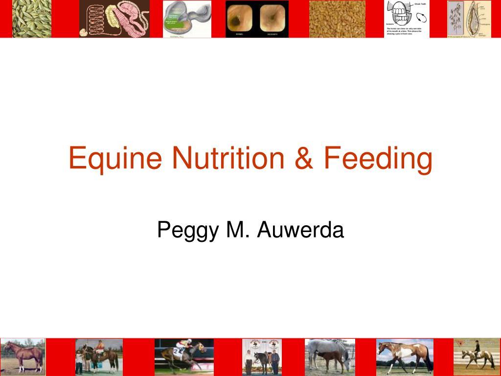 equine nutrition feeding l.
