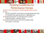 feeding guidelines for performance horses