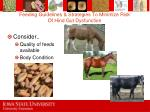 feeding guidelines strategies to minimize risk of hind gut dysfunction72