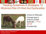 feeding guidelines strategies to minimize risk of hind gut dysfunction73