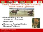 feeding guidelines strategies to minimize risk of hind gut dysfunction76