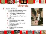 minerals40