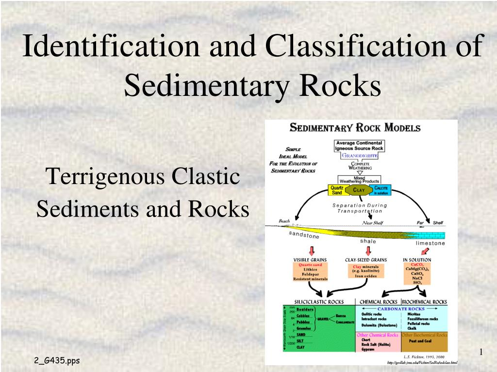 identification and classification of sedimentary rocks l.