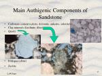 main authigenic components of sandstone