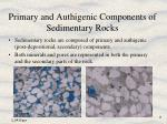 primary and authigenic components of sedimentary rocks