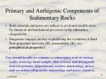 primary and authigenic components of sedimentary rocks14