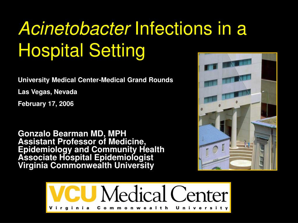 acinetobacter infections in a hospital setting l.