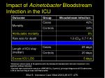 impact of acinetobacter bloodstream infection in the icu