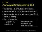 scope acinetobacter nosocomial bsi
