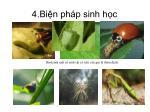 4 bi n ph p sinh h c