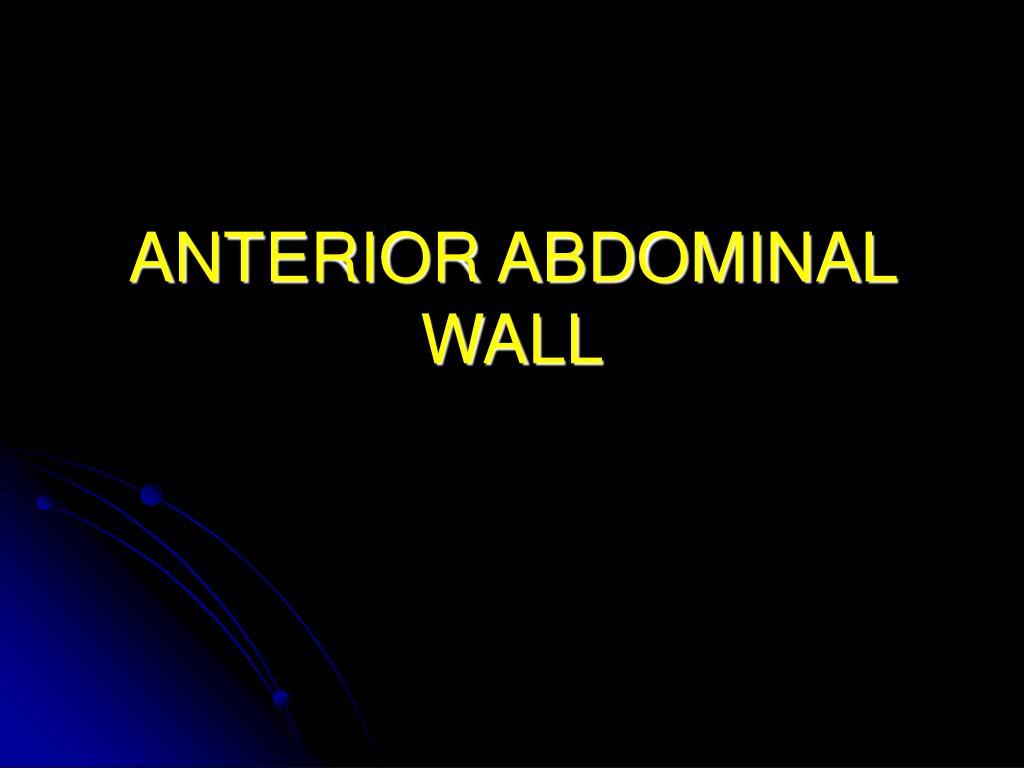 anterior abdominal wall l.