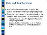 rats and touchscreens
