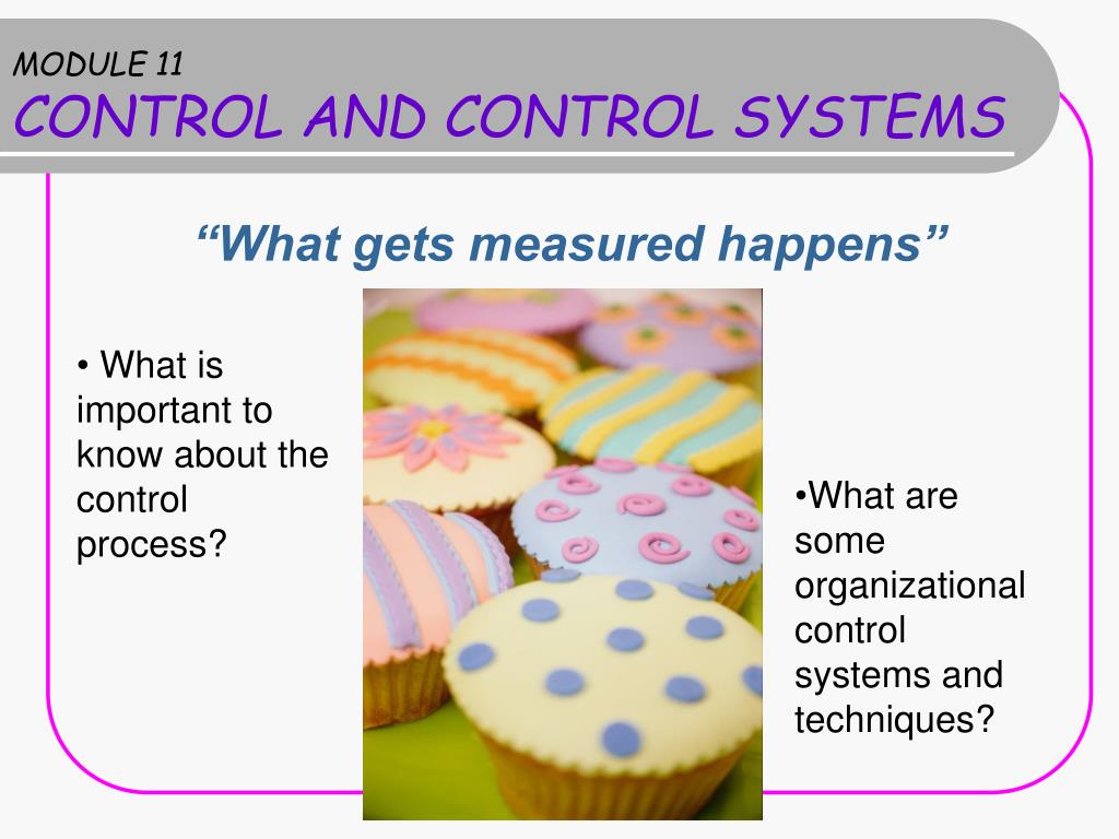 module 11 control and control systems l.