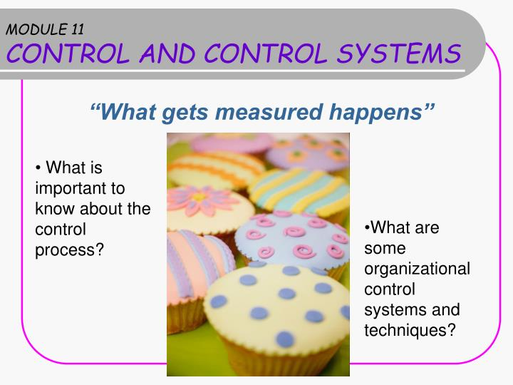 module 11 control and control systems n.