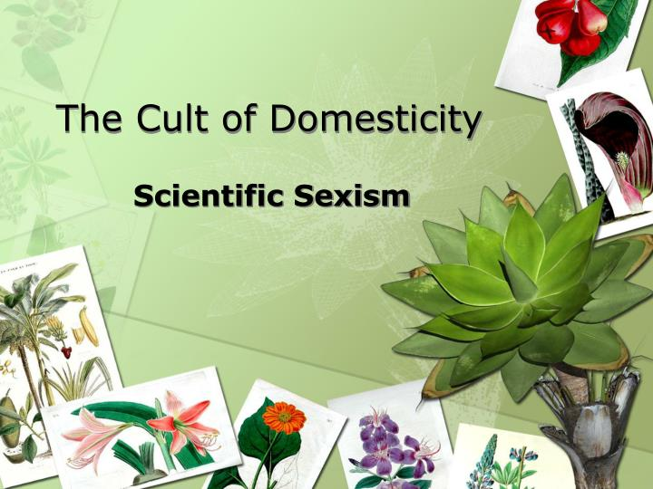 the cult of domesticity n.