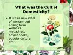what was the cult of domesticity