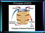 principals of mcs