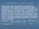 calculating allelic and genotypic frequencies