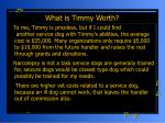 what is timmy worth