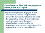 other issues risk with two exposure bases sales and payroll63
