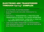 electrons are transferred through cyt b 6 f complex