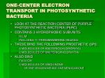 one center electron transport in photosynthetic bacteria