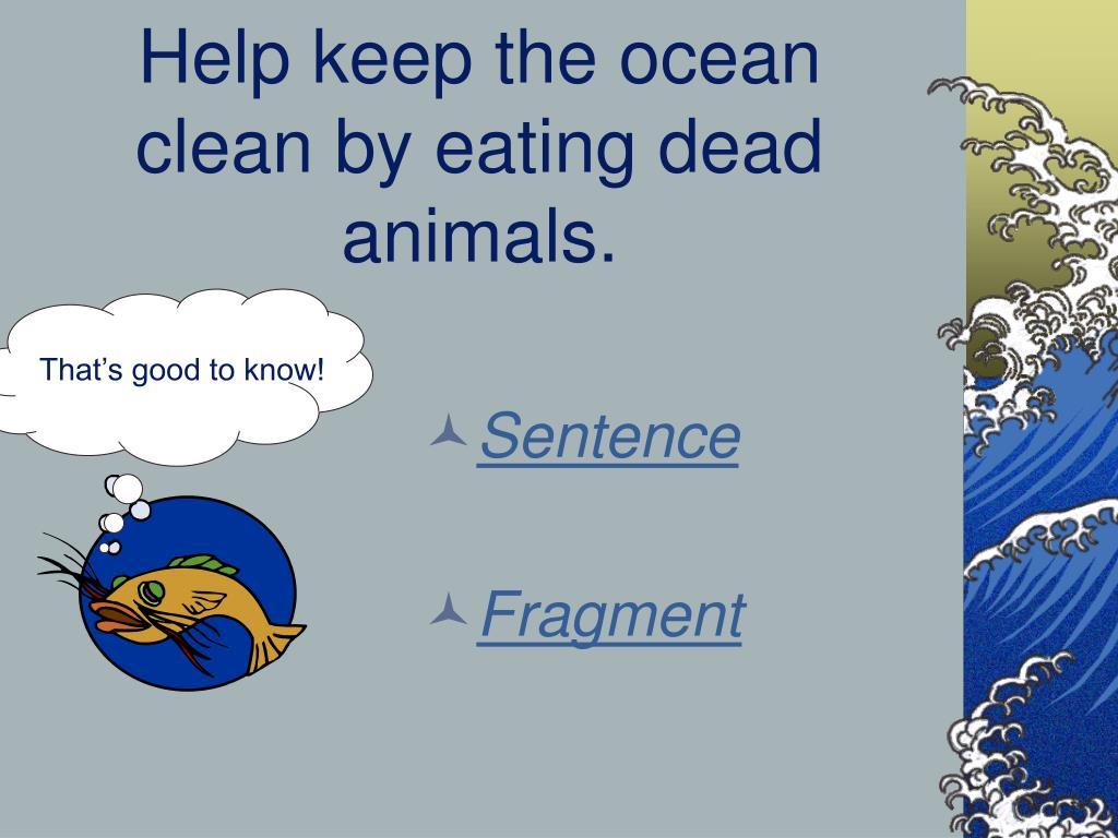 Help keep the ocean clean by eating dead animals.