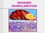 wegener granulamotozu35
