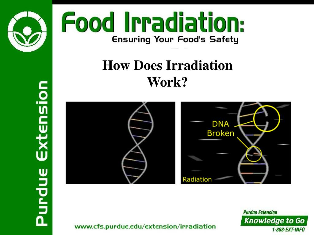 How Does Irradiation Work?