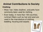 animal contributions to society18