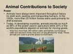 animal contributions to society20