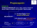 propiocepci n1