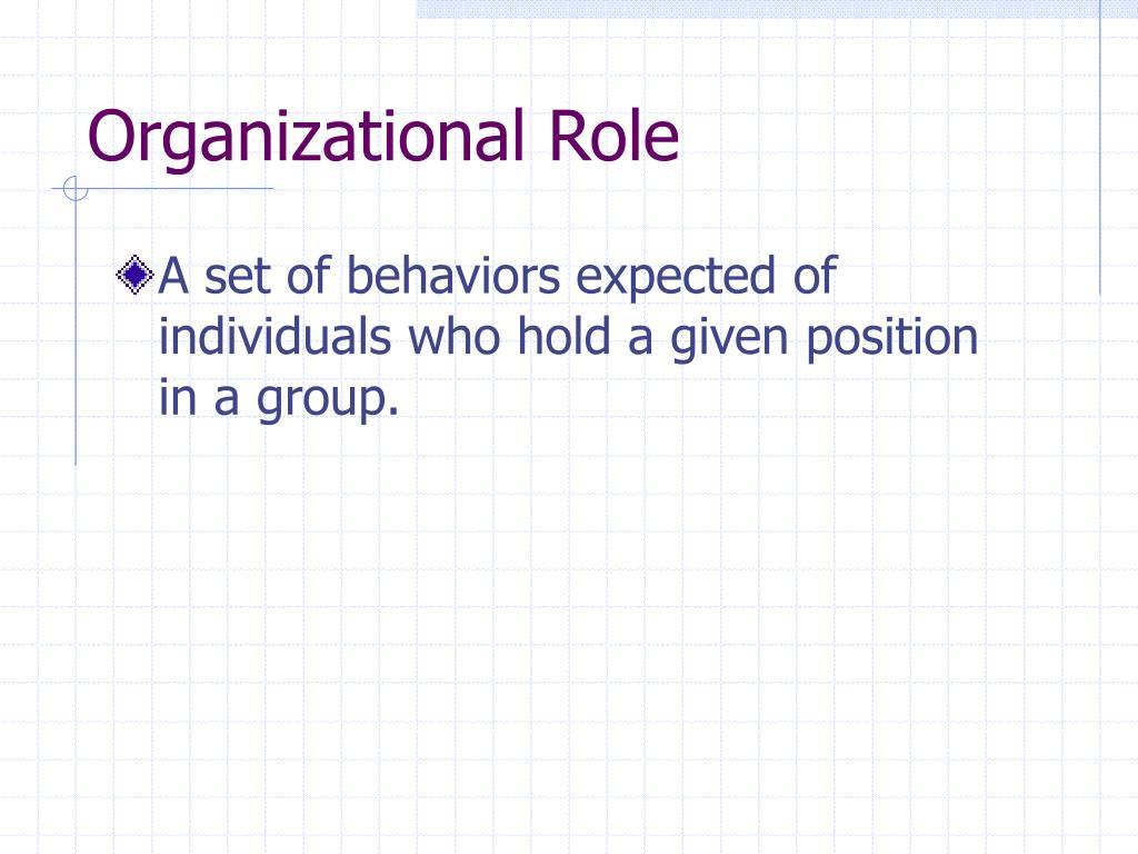 Organizational Role