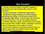 why tourism31