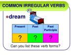 common irregular verbs20