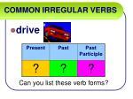 common irregular verbs22
