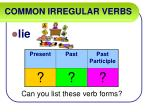 common irregular verbs40