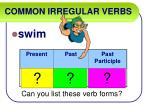 common irregular verbs54