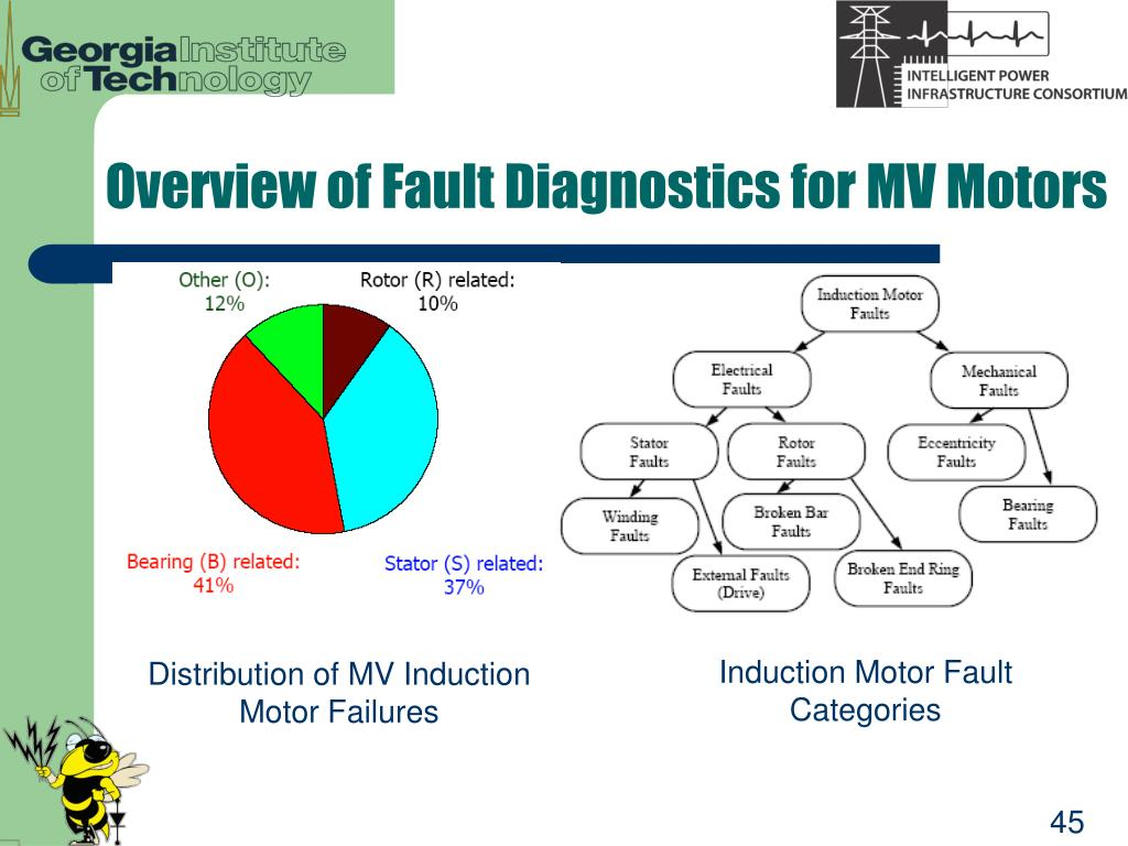 Overview of Fault Diagnostics for MV Motors