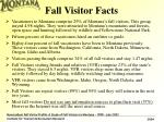 fall visitor facts