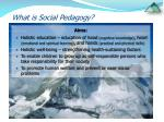 what is social pedagogy8