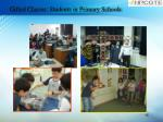 gifted classes students in primary schools