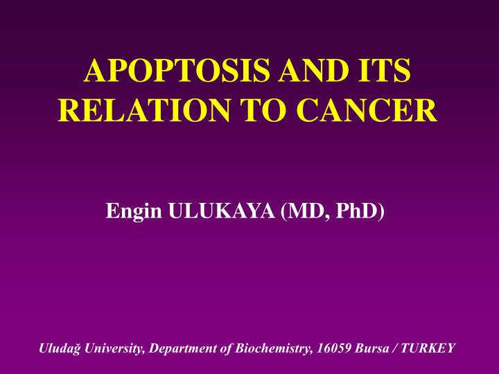 apoptosis and its relation to cancer n.