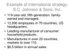 example of international strategy s c johnson sons inc