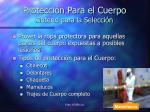protecci n para el cuerpo criterio para la selecci n
