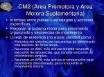 cm2 area premotora y area motora suplementaria