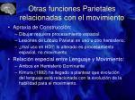 otras funciones parietales relacionadas con el movimiento