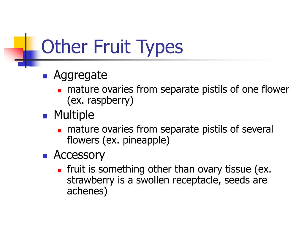 Other Fruit Types