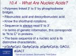 10 4 what are nucleic acids