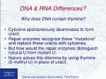 dna rna differences